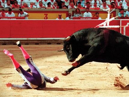 Фигурки быка – едва ли не самый распространенный сувенир из Испании. Эти символы страны встречаются повсеместно: большие и маленькие, из любых материалов, любых цветов, так что привозить их в подарок из этой страны все равно, что дарить иностранцу матрешку - это уже давно совсем не оригинально. Не считающие себя вегетарианцами могут приобрести иной сувенир - настоящий хвост заколотого на корриде быка. Договариваться о приобретении этого раритета нужно с хозяином ресторанчика Casa Toribio, который находится в двух шагах от Пласа де Торос на улице Карденал Беллуга. Лишь этот человек имеет эксклюзивное право получать хвосты всех быков, сражавшихся на столичной арене Лас Вентас и на десяти стадионах для корриды в других испанских землях.